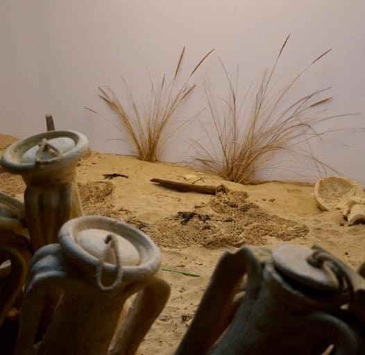Museo Del Moscatel Chipiona