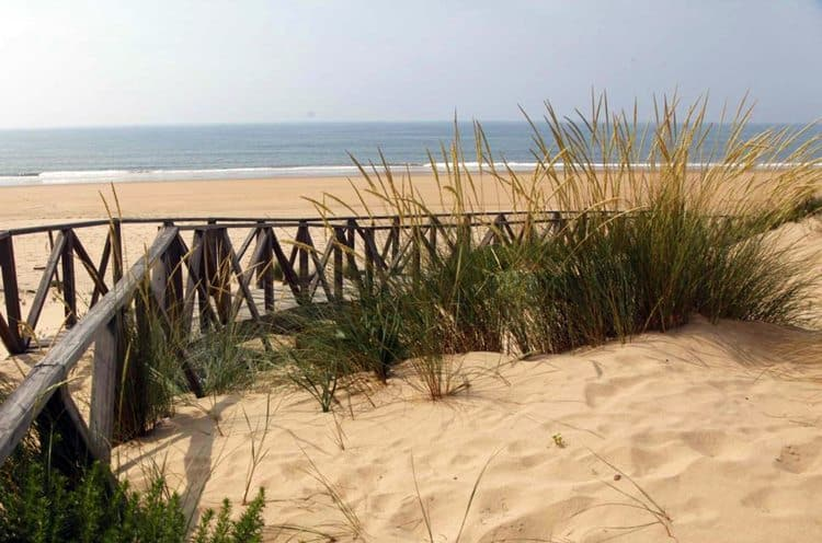 Playa Santa Pura
