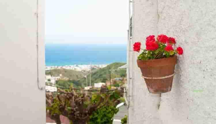Puedo Viajar A Andalucia